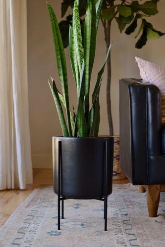 Mid-Century Modern Black Planter with Black Plant Stand
