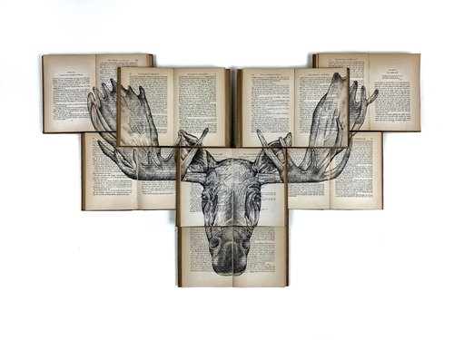 Great Danes - Moose