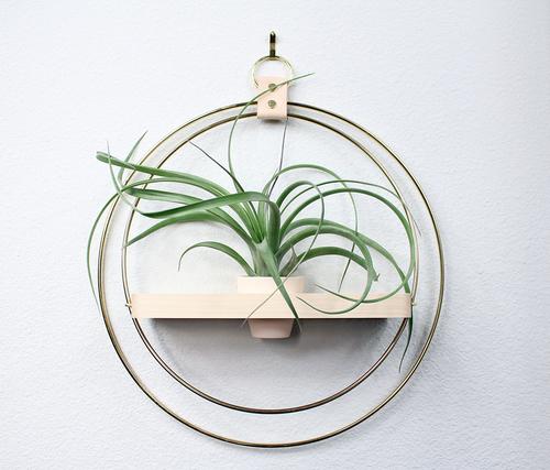 Plant Shelf (Blush)