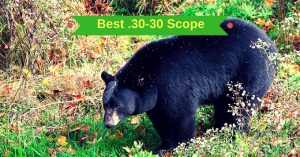 Best .30-30 Scope