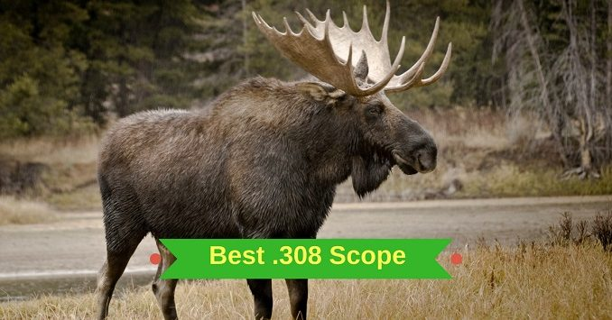 Best .308 Scope