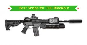 Best Scope for 300 Blackout