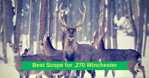 Best Scope for 270 Winchester