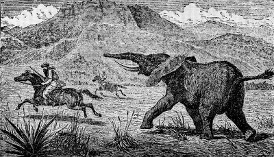 A picture of an elephant chasing a man on horsback