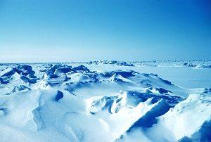 300px-Sea_ice_terrain