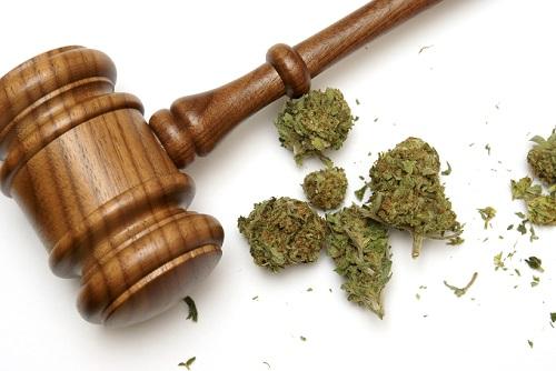 Gavel and Marijuana