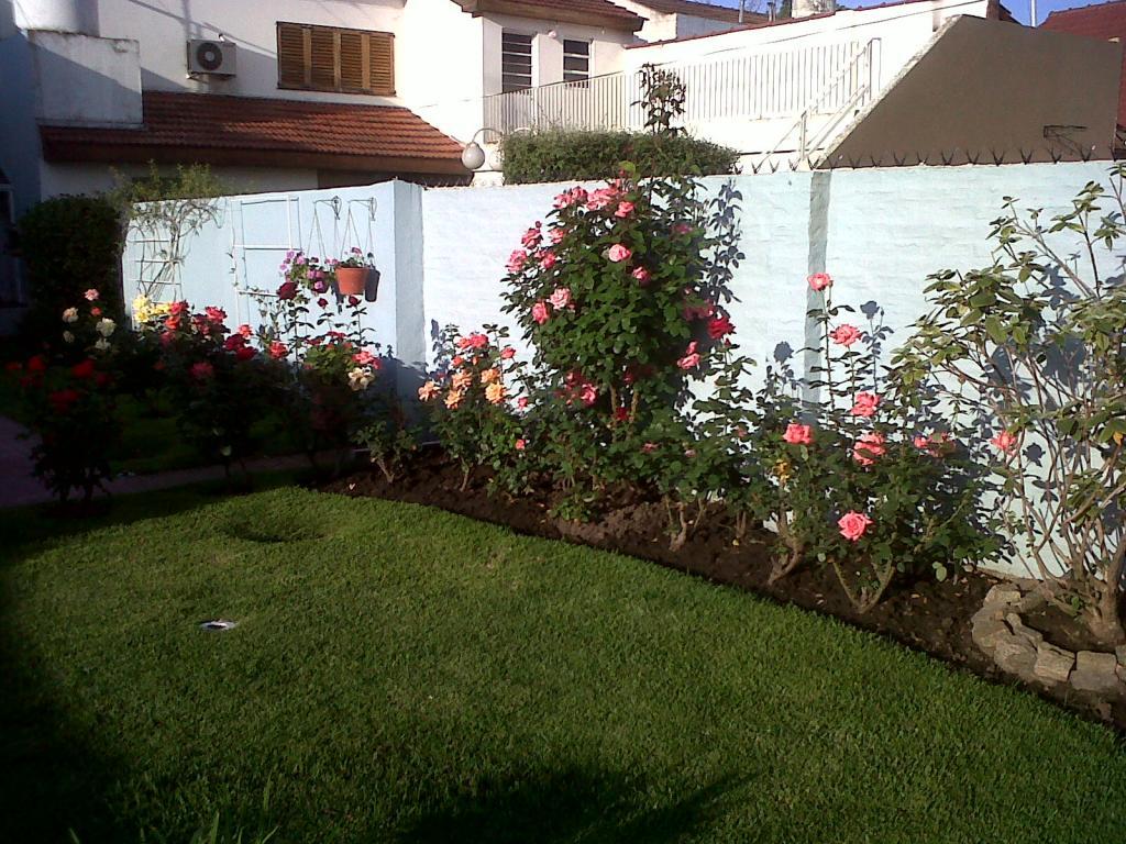 Primavera en el jardin de mi casa for Casas mi jardin