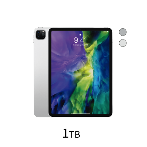 iPad Pro 11 inch Wi-Fi 1TB