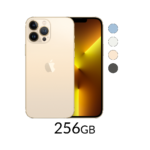 iPhone 13 Pro Max 256GB