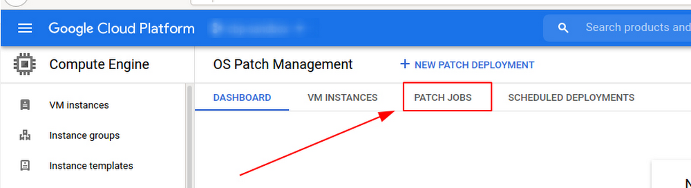 2 Patch Jobs.jpg