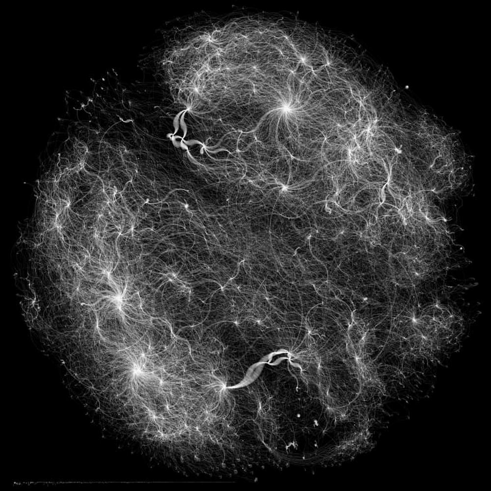 "Bayer Crop Science's 60,000 member corn ""galaxy,"".jpg"