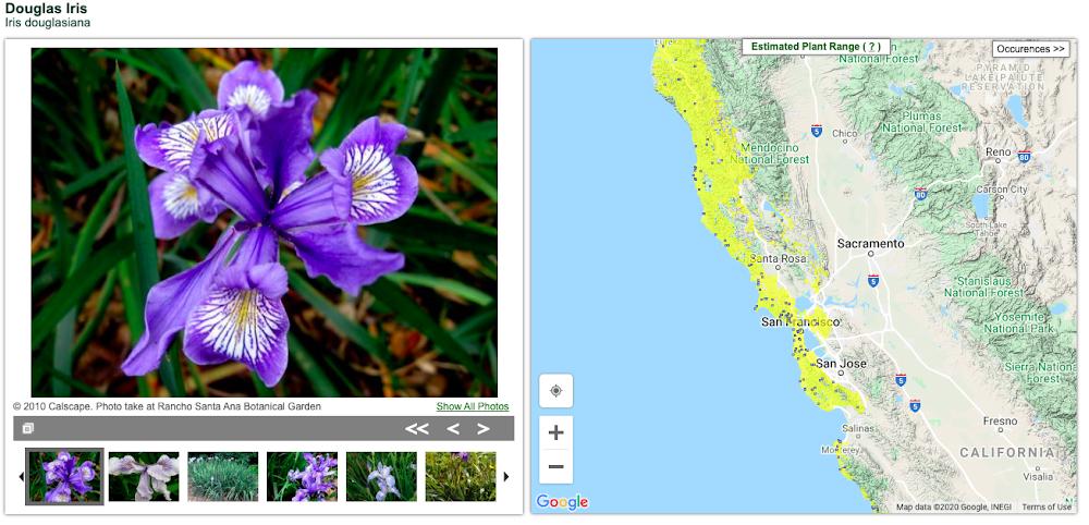 The California Native Plant Society