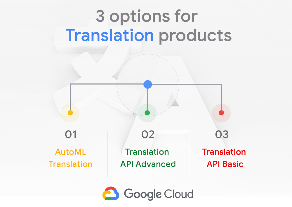 Google Translation product options.jpg