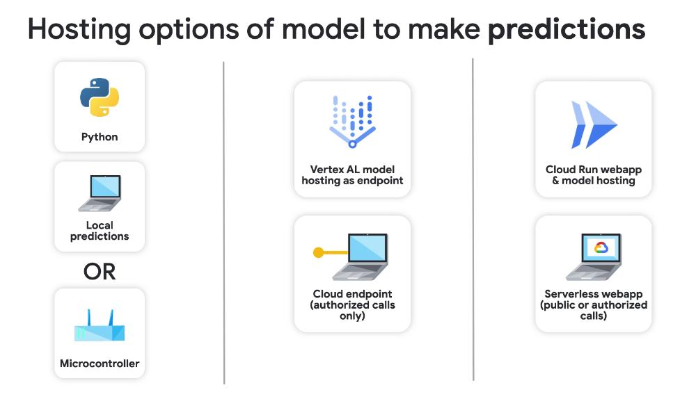 3 options for hosting model