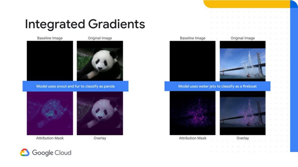 Integrated gradients.jpg