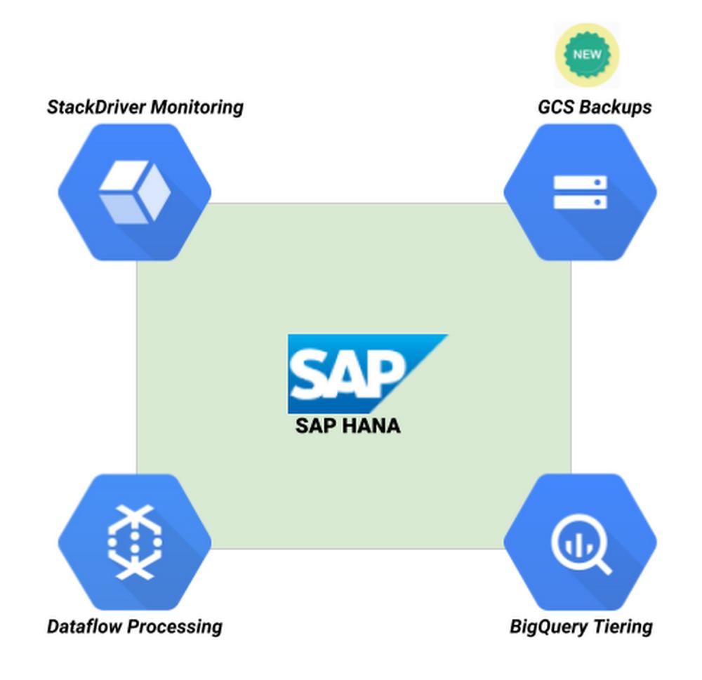 SAP HANA ecosystem.png