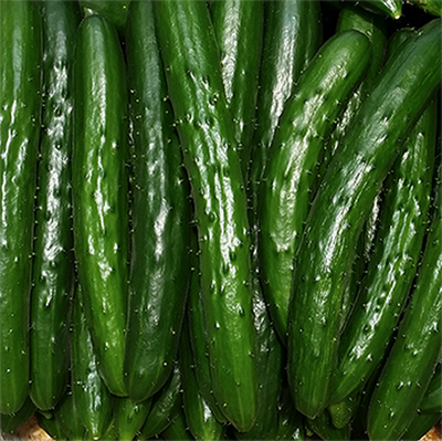 How a Japanese cucumber farmer is using deep learning and