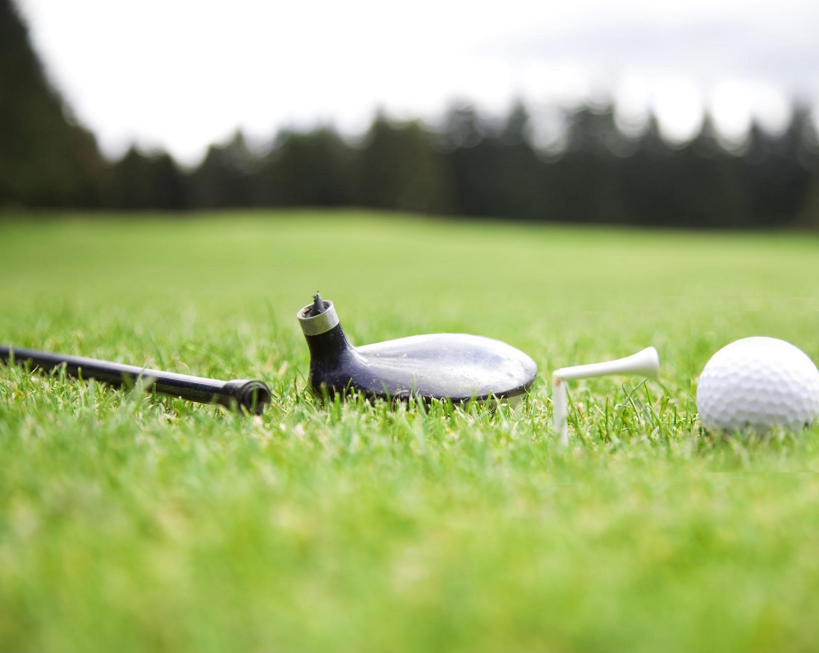 1 golf.jpg