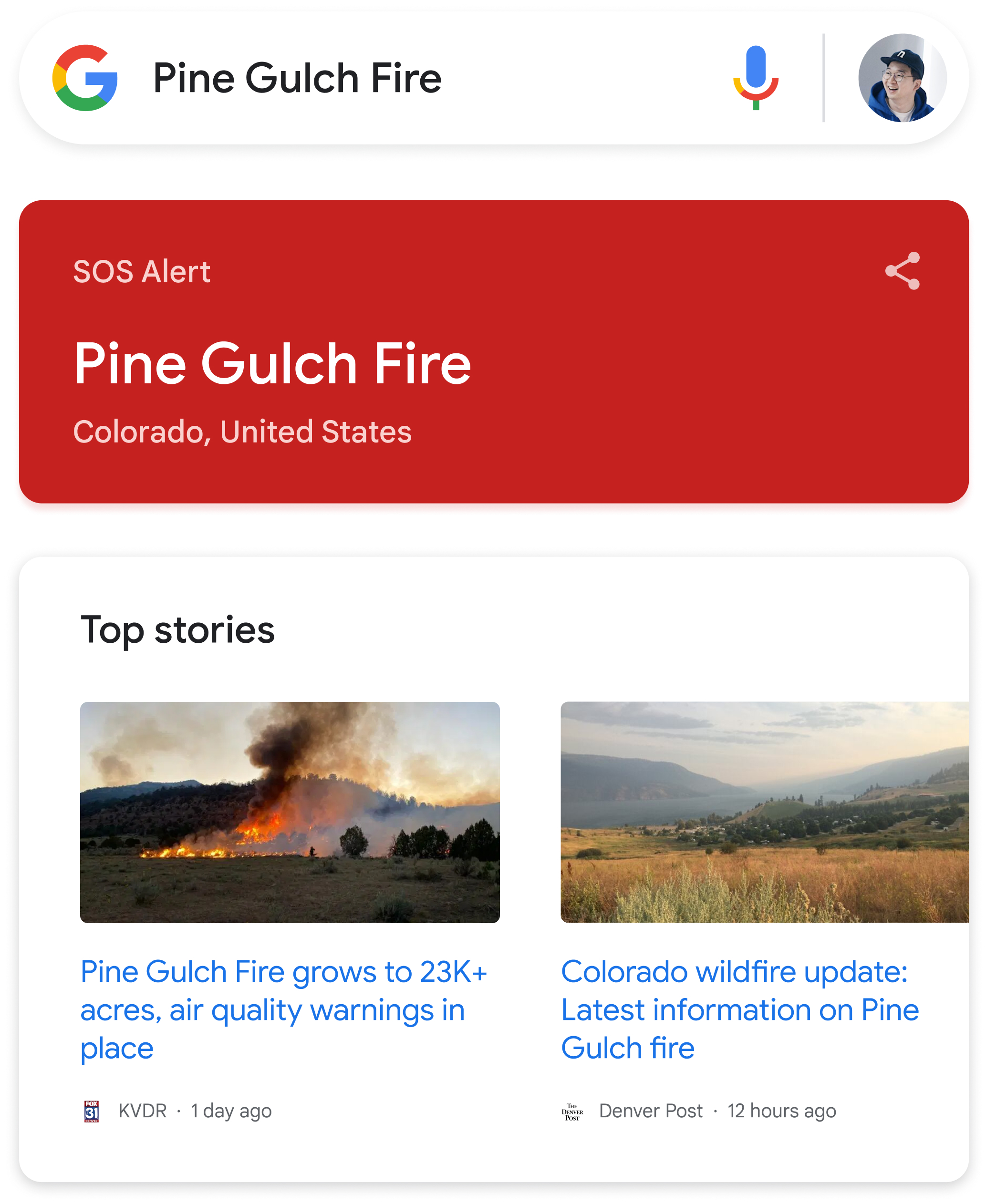 Google Search bar with query 'Pine Gulch Fire'
