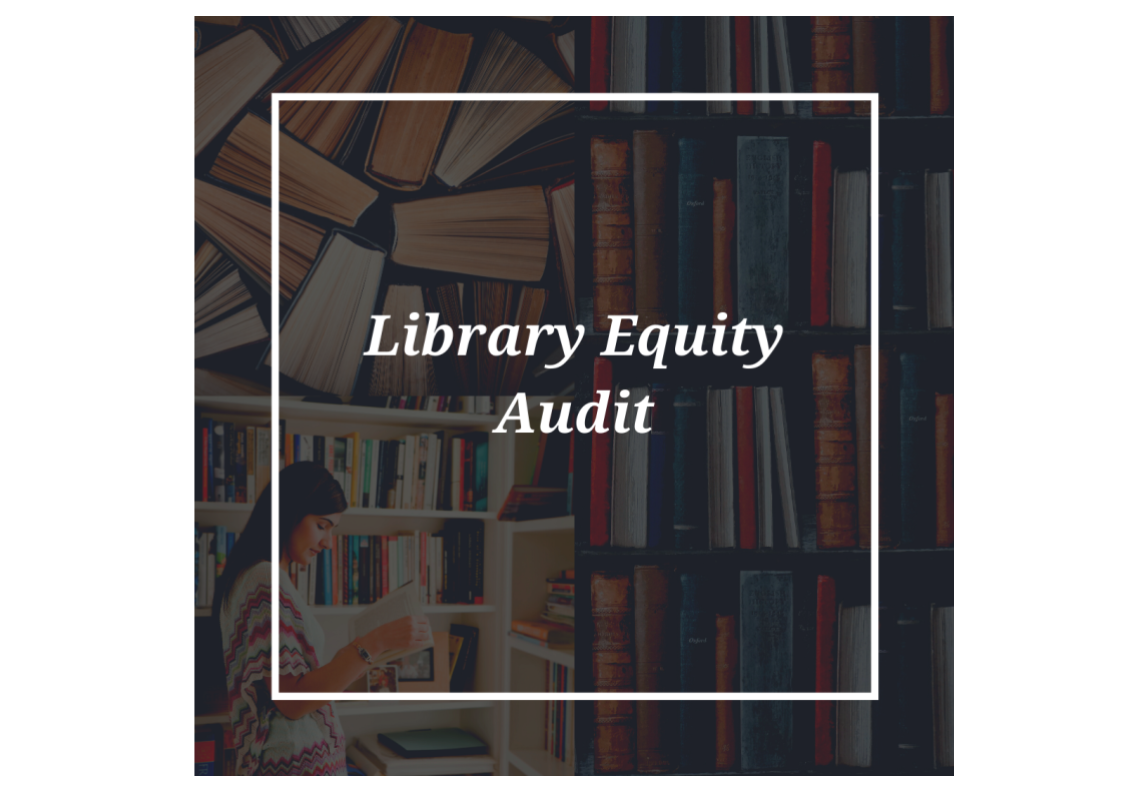 Library Equity Audit