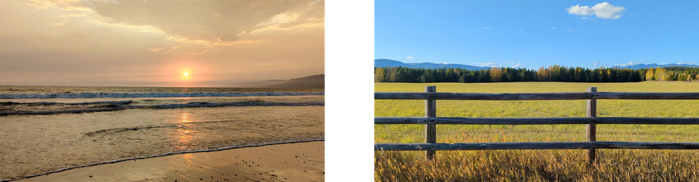 Alt text: Frames of 4K60 Live HDR+ video at a beach during sunset and a field in the afternoon.