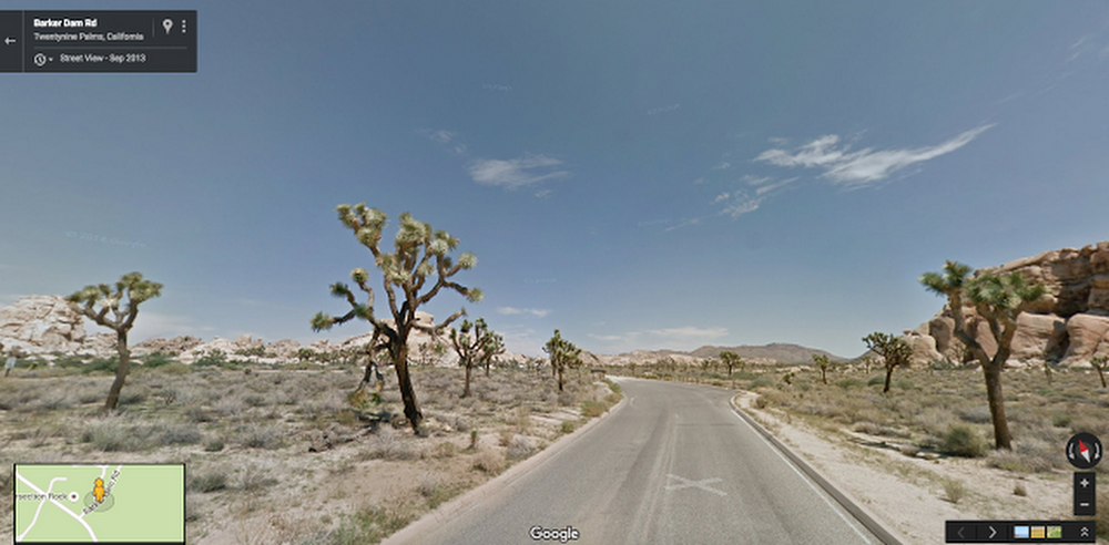 Joshua Tree - Street View