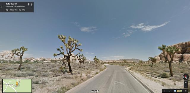 Joshua Tree - Street View