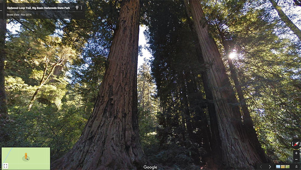 05 Sempervirens Campground.png