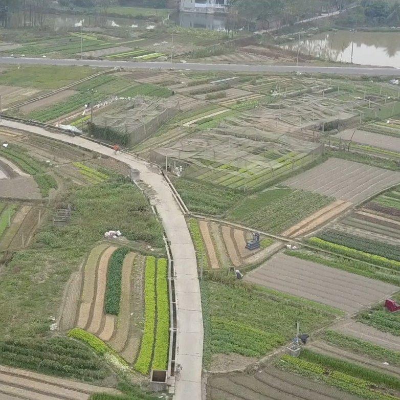 Farm land in Vietnam