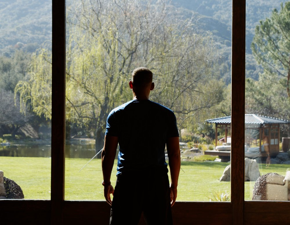 Will Smith looks out a window at a field with trees and mountains.