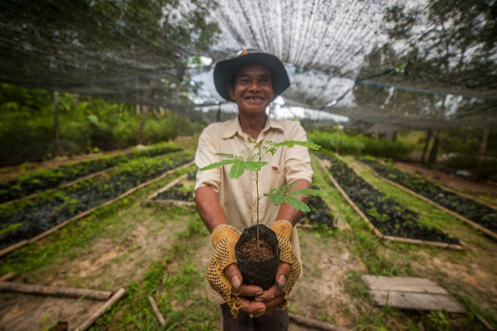 A restoration practitioner from Fairventures Worldwide in Indonesia