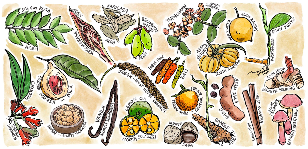 An illustration of spices from Indonesia.