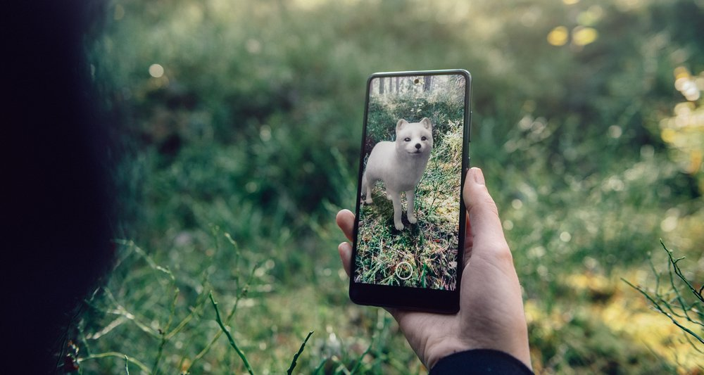 A woman is holding a phone with a augmented reality image of a white arctic fox superimposed on the green landscape in front of her