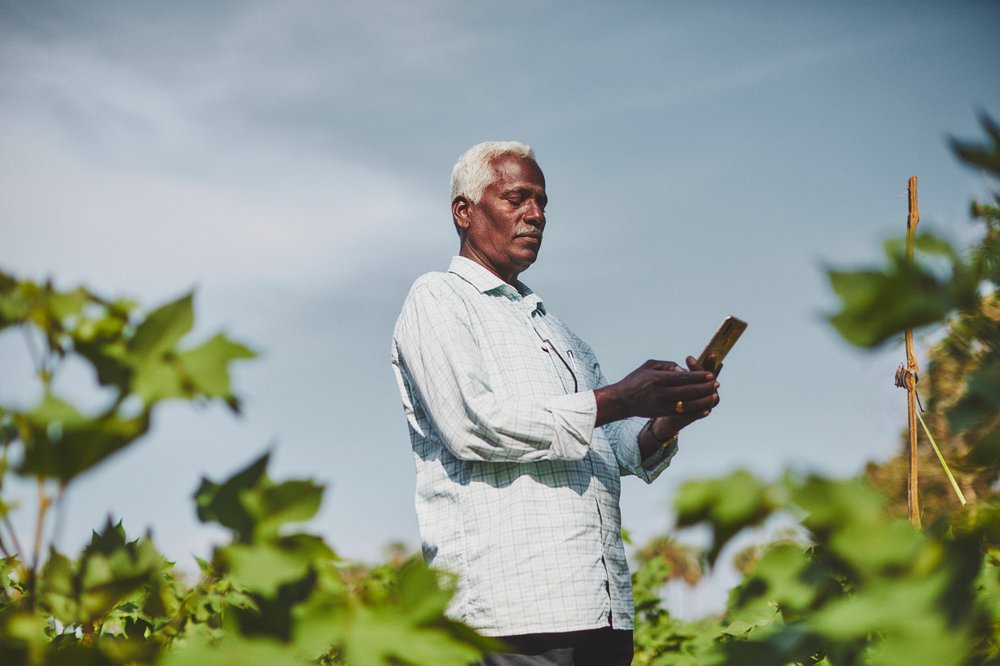 A photo of a farmer using the CottonAce app in his field