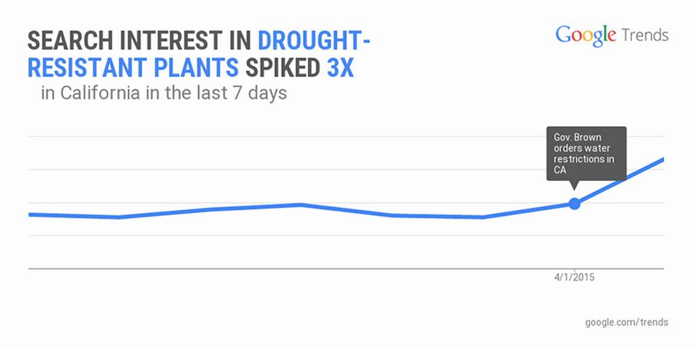 Drought-plants.width-1024.png