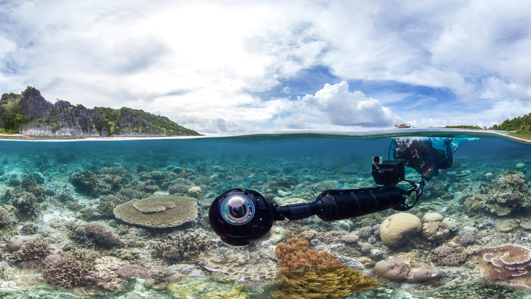 Google Keyword Chasing Coral Image 001.jpg