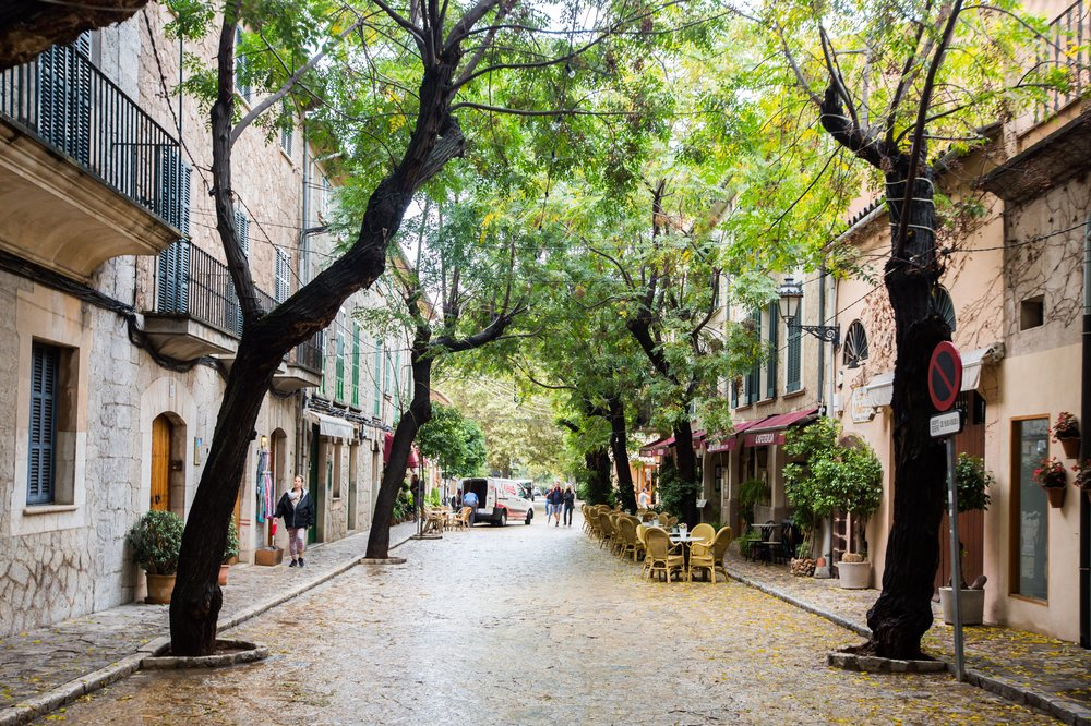 leafy old town street in Mallorca
