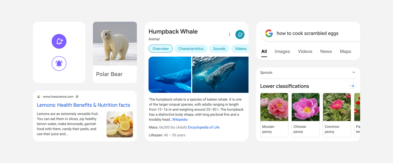 A Google designer takes us inside Search's mobile redesign