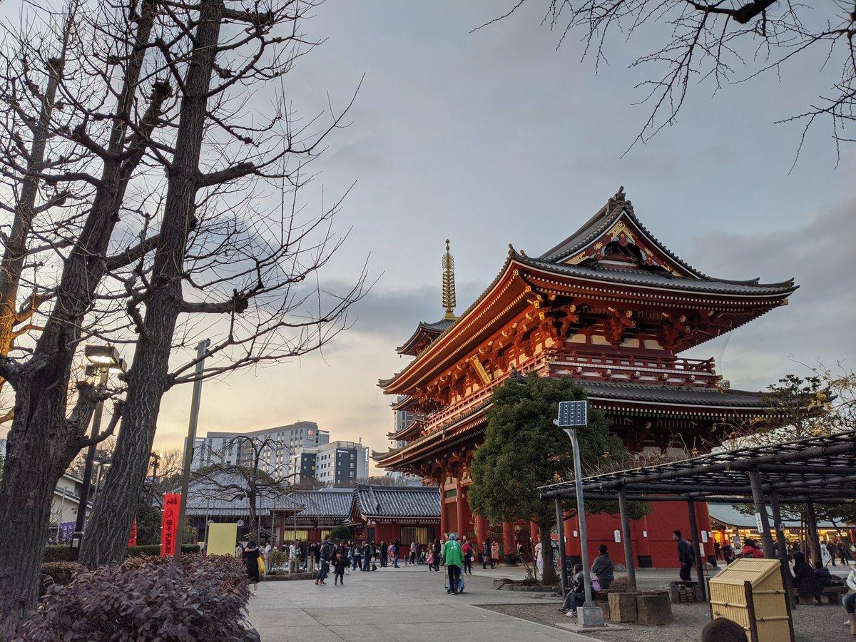 Japan temple skyline