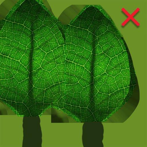 leafwrong