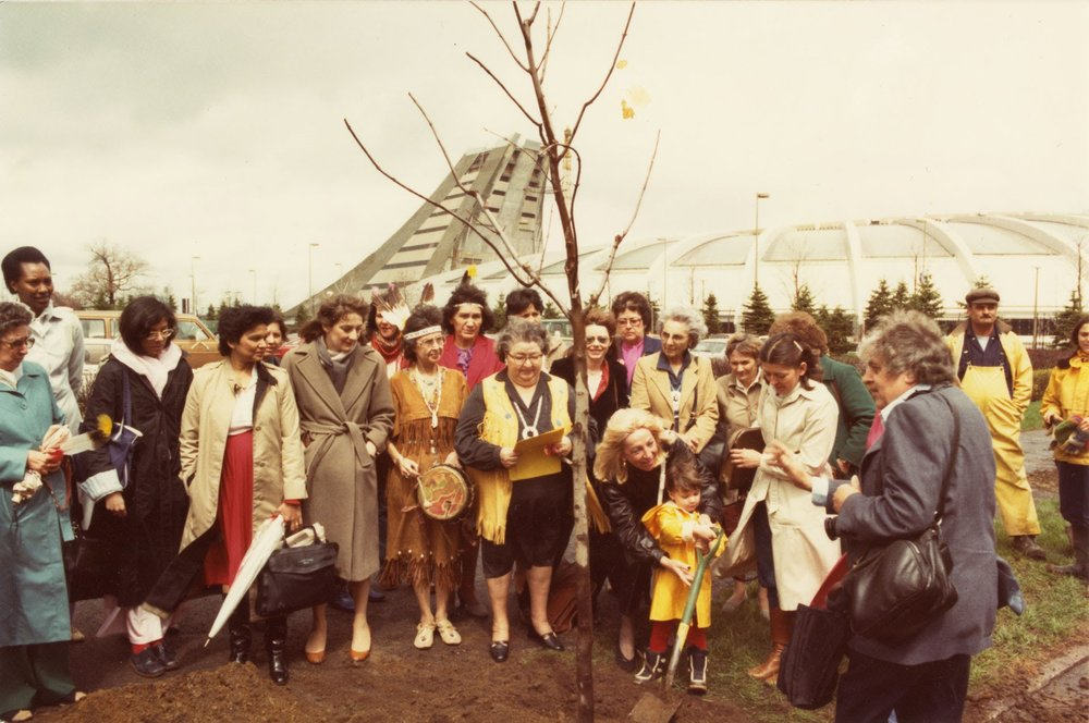 Photo showing a group of women gathered around a tree at a planting ceremony.