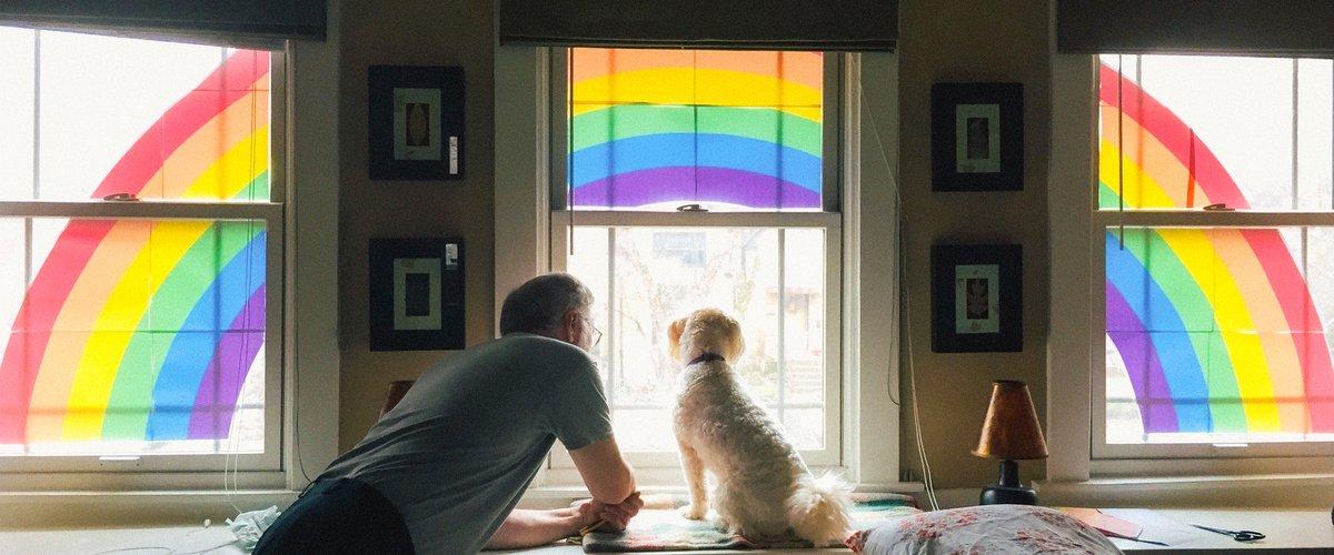 Rainbow in the window