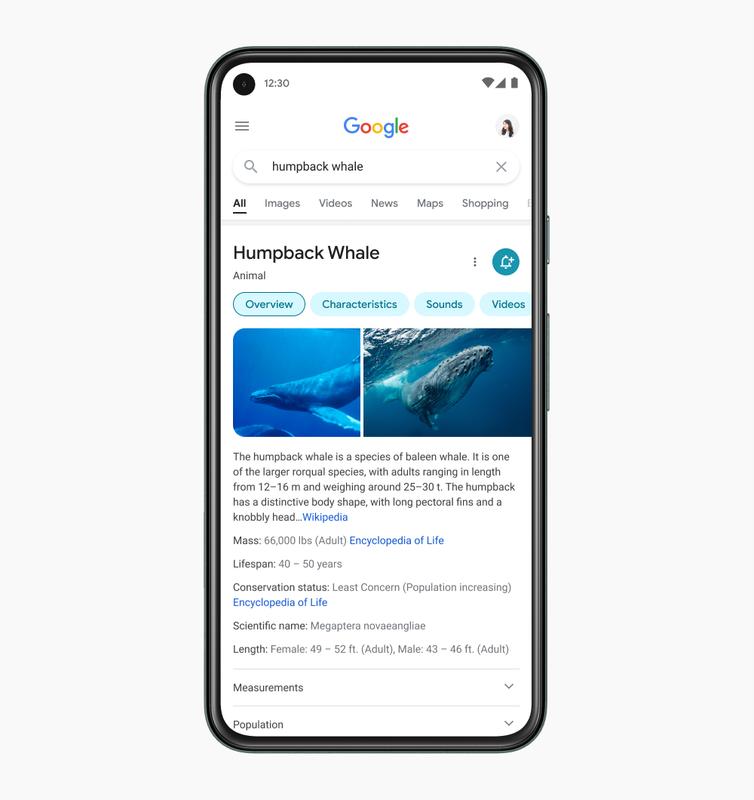Il nuovo design di Google mobile
