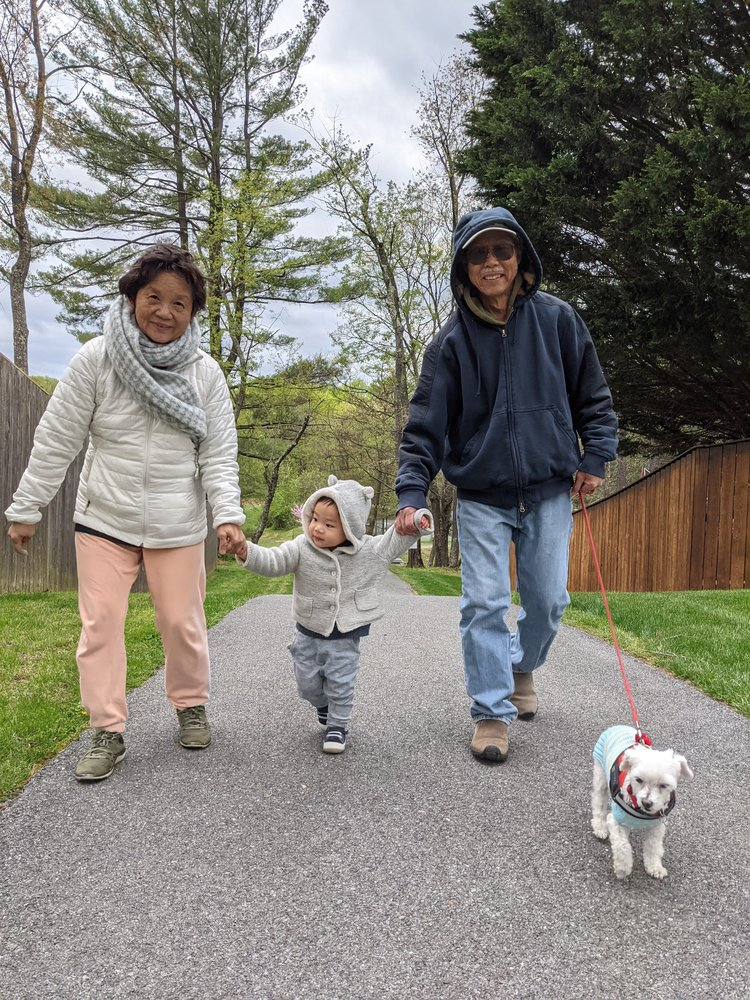 Tony's parents, Owen, and a small white dog named Lulu all holding hands walking down a sidewalk together with trees in the background.