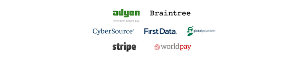 Payment-Networks_Pay-SG.width-320.png