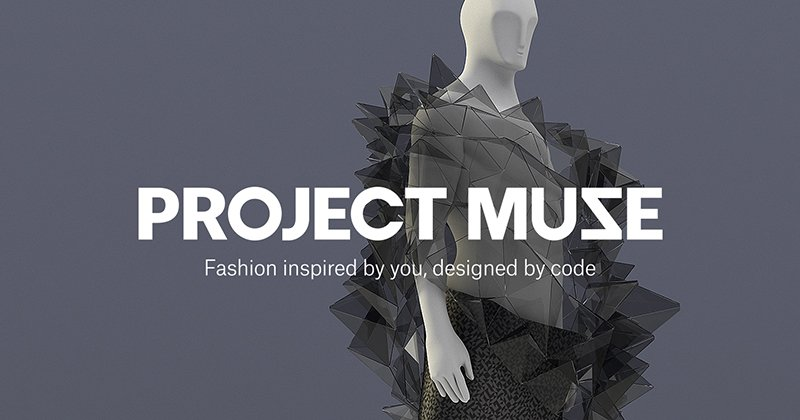 Project Muze Hero