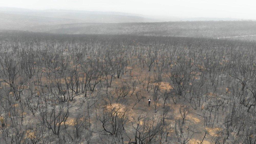 Australian bushfire devastation