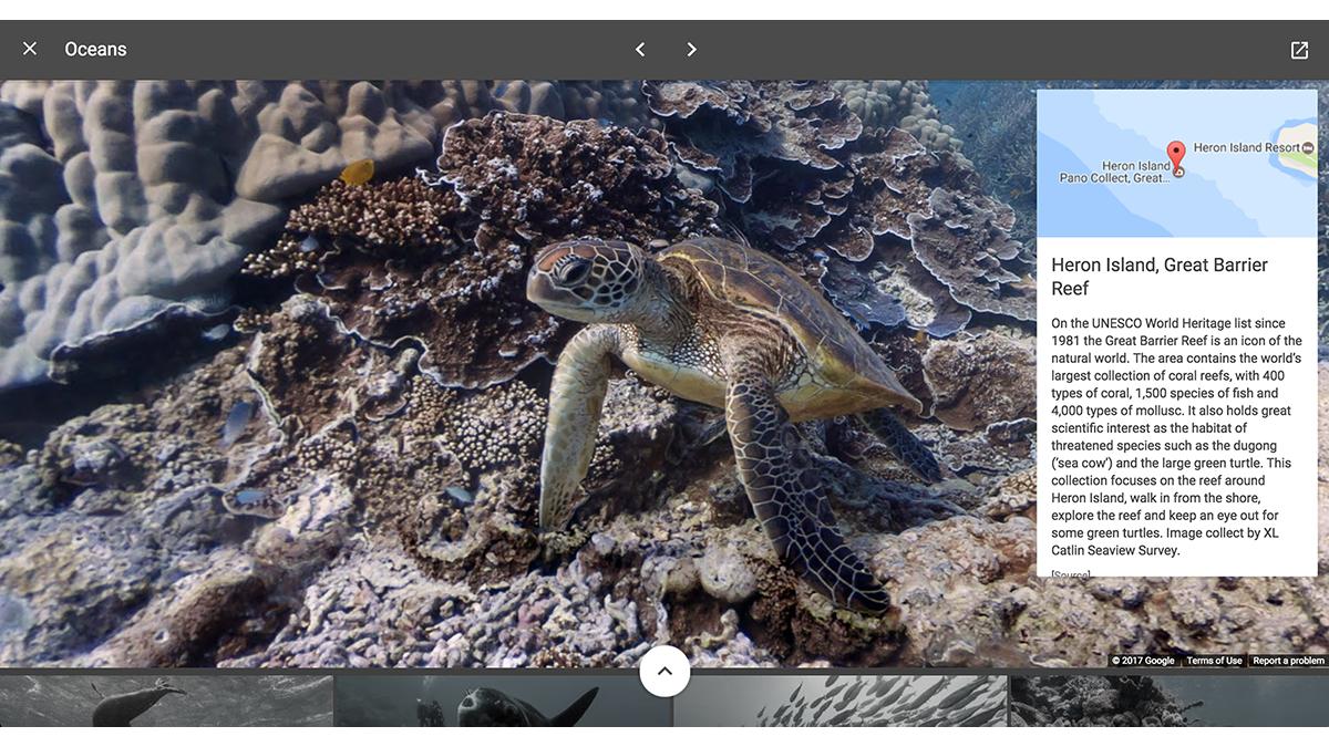 SV_Oceans_Heron Island.png