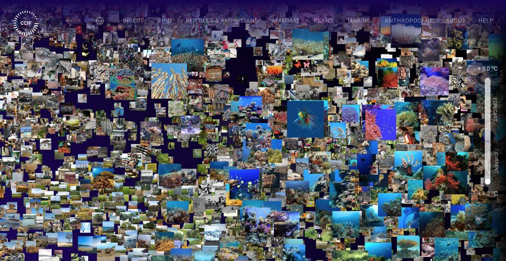 Screenshot des Experiments Impact Filter
