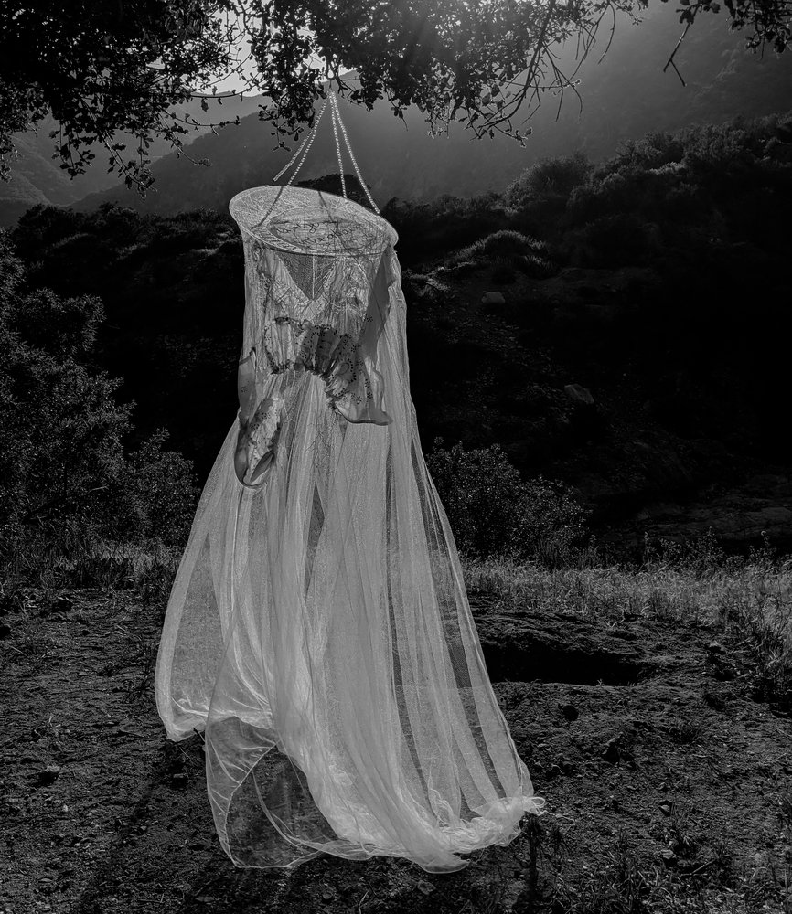 A black and white photo of a piece of cloth hanging from a tree, blowing in the wind.